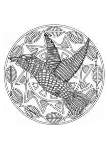mandala pájaro