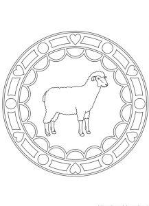 mandala oveja