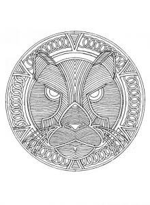 mandala tigre