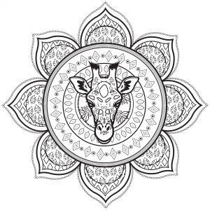 mandala jirafa