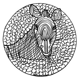 mandala zebra