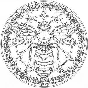 mandala abeja
