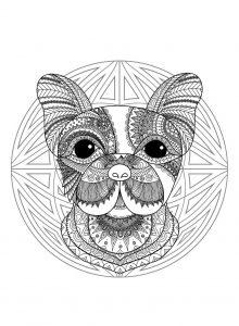 mandala perro