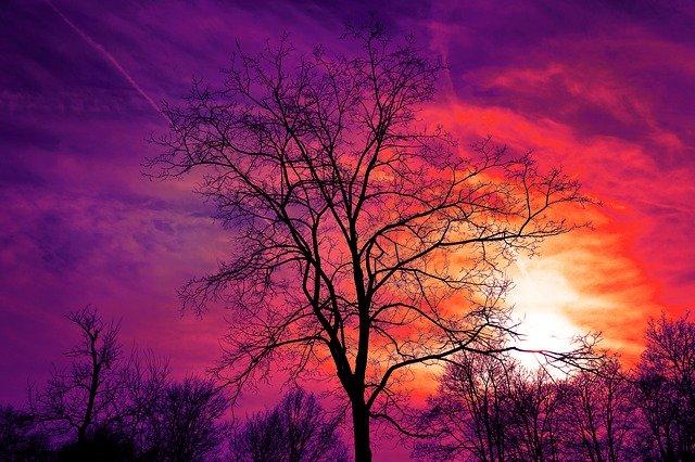 colores violeta y anaranjado en un atardecer