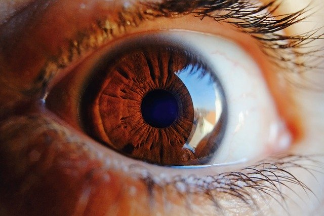forma de ojo