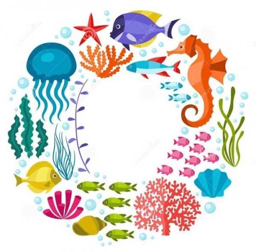 mandalas coloreados peces