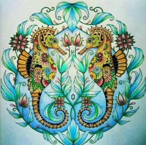 mandalas coloreados caballitos de mar