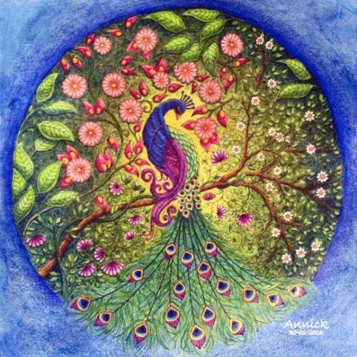 mandala coloreado pavo real