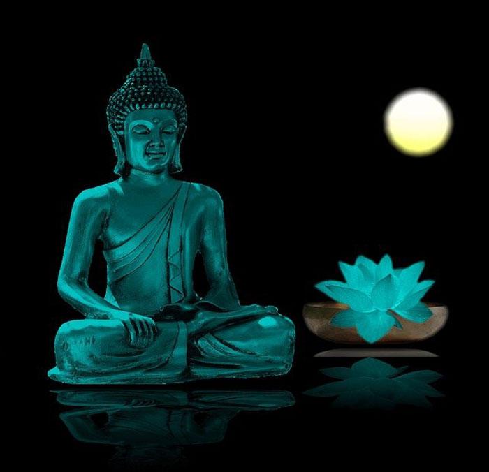 La flor de loto en el budismo